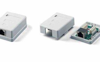 Как подключить розетку — пошаговые примеры правильного подключения провода к розетке