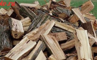 Какими дровами лучше топить печь — советы по выбору и хранению