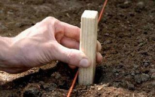 Забор из рабицы своими руками — пошаговая инструкция