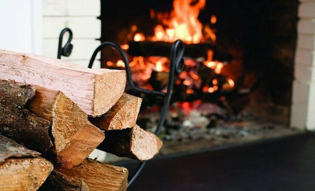 Какие дрова лучше для отопления - научитесь выбирать правильно