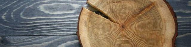 Как выбрать древесину для постройки дома - обзор пород древесины, рекомендации, какую лучше выбрать