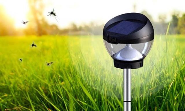 Как избавиться от комаров на дачном участке: лучшие способы