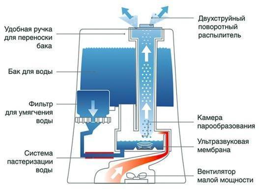 Принцип работы увлажнителя воздуха - разновидности приборов и их особенности с видео обзором