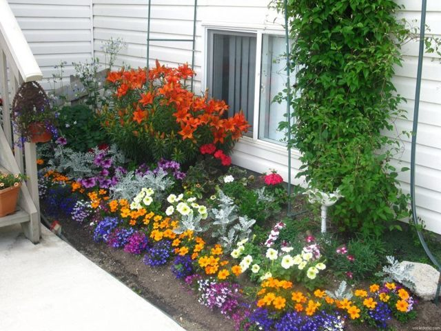 Цветники на даче своими руками - 10 лучших вариантов