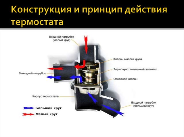 Термореле с выносным датчиком температуры: параметры